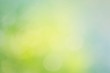 Abstract blur spring background. Green and blue bokeh