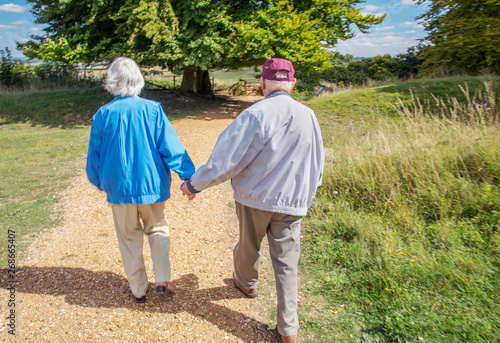 Vászonkép Elderly couple holding hands while visiting the British countryside