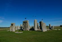 Stonehenge Krähen Crow