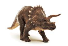 Triceratops Jurassic Dinosaur ...