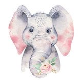 A poster with a baby elephant. Watercolor cartoon elephant tropical animal illustration. Jungle exotic summer print. - 268699022