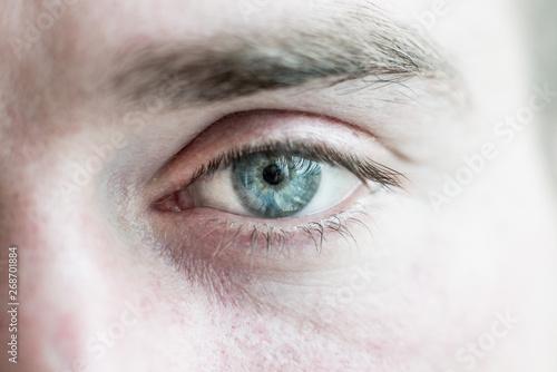 Fotomural  human eye is very close