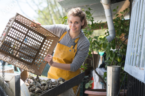 Fotografija woman working at an oyster farm