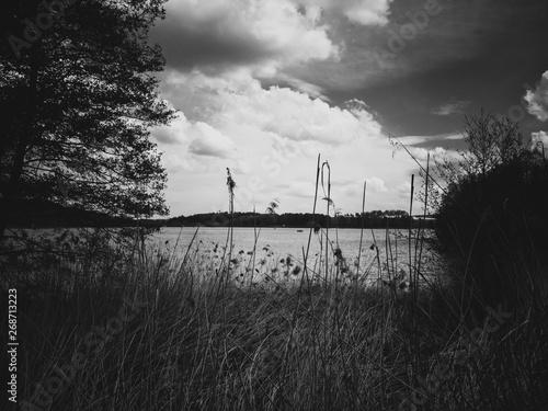 Aluminium Prints Dark grey sunset on the river