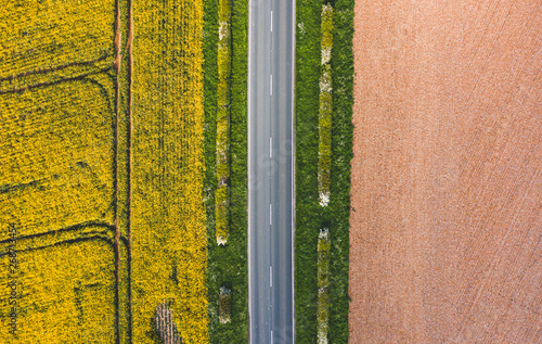 Fototapeta Aerial shot of agricultural landscape. Straight narrow road between sunny green grass, rapeseed and a brown field - Yorkshire, England, Spring 2019 obraz