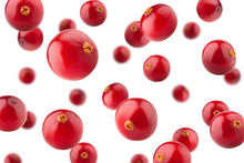 Falling Cranberry Isolated On White Background, Selective Focus