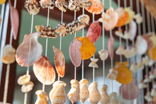 Mobile Made From Shells Hangin...