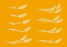 Set Of Hand Drawn White Wheat Ears