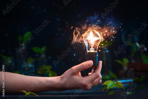 Cuadros en Lienzo Lightbulb with a butterfly inside in a hand