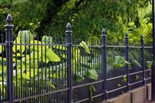 Gartenzaun Aus Eisen In Schwarz
