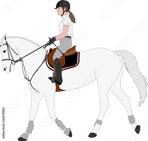 Photo detailed color illustration of young female riding elegant horse