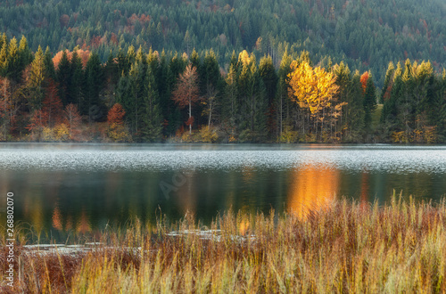 Fototapety, obrazy: Womderful Autumn landscape. Road on meadow with grass on top view. Fairy Alpine lake Geroldsee with morning fog under sunlit. Dramatic Impressive scene. Amazing nature background