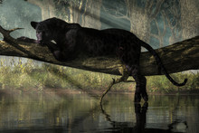 A Black Panther Sits On A Log ...