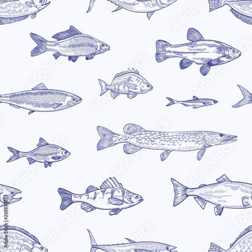 monochromatyczny-bezszwowy-wzor-z-roznorodnymi-typ-reka-rysujaca-z-konturowymi-liniami-na-lekkim-tle-ryba-tlo-ze-zwierzetami-morskimi-lub-oceanicznymi-stworzeniami-wodnymi-elegancka-realistyczna-wektorowa-ilustracja