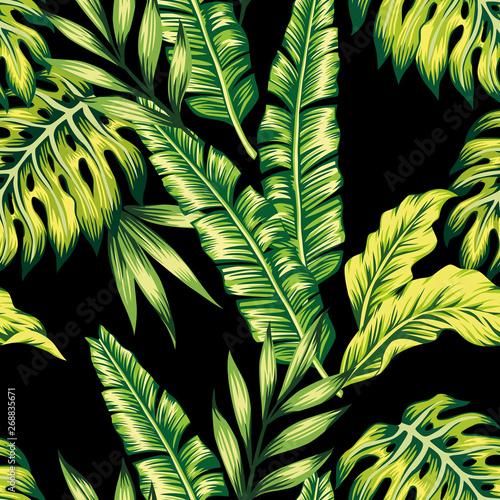 tropikalne-rosliny-bezszwowe-tlo
