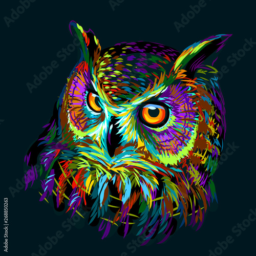 Keuken foto achterwand Uilen cartoon Long-eared Owl. Abstract, multicolored graphic hand-drawn portrait of an owl on a dark green background.