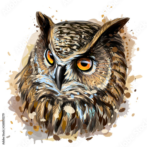 Poster Uilen cartoon Long-eared Owl. Color hand-drawn portrait of an owl on a white background with splashes of watercolor.