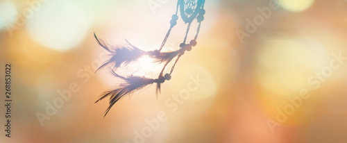 Blurred image, Dream catcher native american in the wind and blurred bright ligh Canvas Print