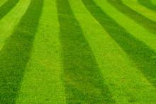 Green Grass Lawn Mowed In A Striped Pattern, Decorative Grass Pattern, Gardening And Garden Maintenance