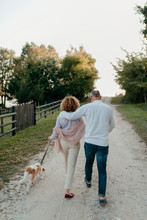 Senior Couple Walking With Dog