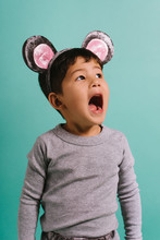 Kid In Mouse Costume