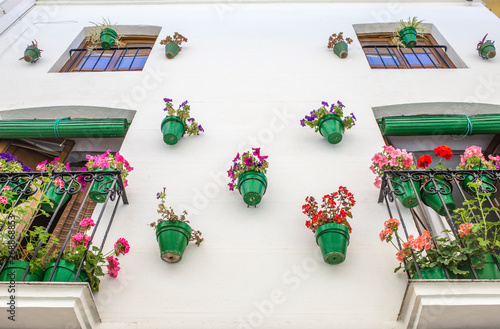 Türaufkleber Weltkarte House facade full of green plowerpots