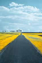 Rural Landscape During Spring In Austria, Shot In Infrared IR