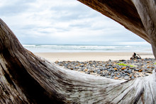 A View Of The Beach At The Oregon Coast Through The Roots Of A Fallen Tree Like A Window To The Sea.