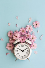 Alarm Clock And Cherry Blossom