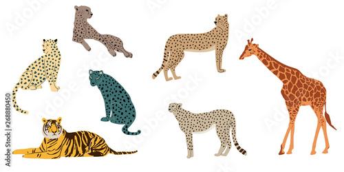 Fotografiet Leopards, tiger, cheetah and giraffe