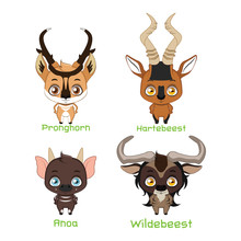 Set Of Various Horned Animals