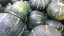 Heap Of Green Pumpkin: A Close-up View
