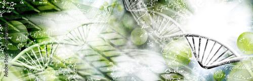 Montage in der Fensternische Makrofotografie image of dna chain on biotechnological background,