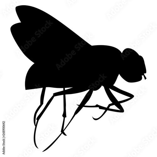 Silhouette noire de mouche sur fond blanc Wallpaper Mural