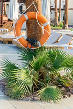Safety. Orange Lifebuoy Hangin...