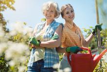 Mutter Und Erwachsene Tochter Haben Spaß Bei Der Gartenarbeit