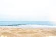 여름배경 프레임, 여름컨셉의 백그라운드