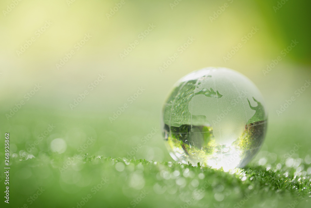 Fototapeta Close up of crystal globe resting on grass in a forest - environment concept