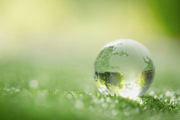 Close up of crystal globe resting on grass in a forest - environment concept