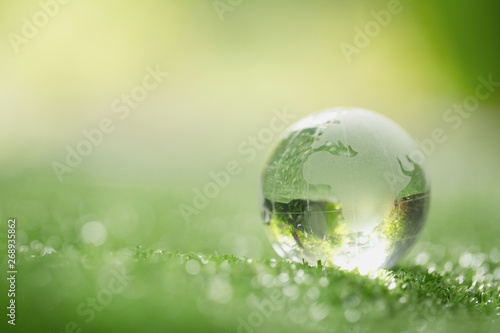 Obraz Close up of crystal globe resting on grass in a forest - environment concept - fototapety do salonu