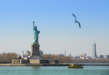 Seagull Flying Towards The Statue Of Liberty