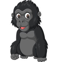 Cartoon Baby Gorilla On White ...