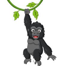 Cartoon Baby Gorilla Hanging In Tree Branch