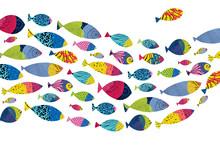 Fish. Vector Poster.