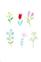Watercolor illustration art design, Set of colorful flowers in watercolor hand pianting style isolated on white background, pattern element for invitation greeting card