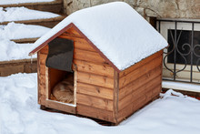 An Empty Wooden Dog House In T...