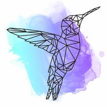 Watercolor Bird Art Illustrati...