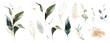 Leinwandbild Motiv  watercolor and gold leaves. herbal illustration. Botanic tropic composition.  Exotic modern design