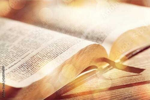 Fotomural  Bible.