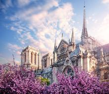 Notre Dame De Paris In Spring ...